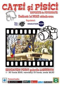 afis Max 2 (2)